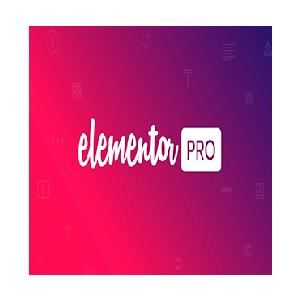 elementor-300x300